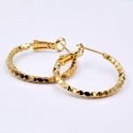 Σκουλαρίκια Golden Hoopies